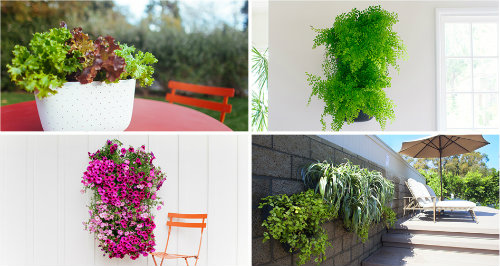 Perfect Living Wall Planter 2